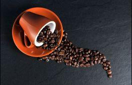 Как создать своими руками топиарий из кофейных зерен «летящая чашка»: пошаговая инструкция
