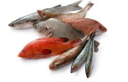 Какая рыба считается самой полезной для взрослых и детей