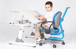 Стул для школьника: как выбрать правильный стул для первоклассника