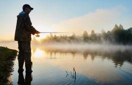 Рыбакам на заметку: при каком давлении атмосферы рыба клюет лучше