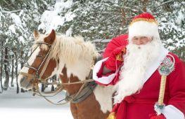 Как празднуют новый год в России: главные традиции