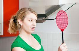 Непрошеные гости: как избавиться от насекомых в квартире