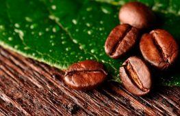 Выбираем кофе в зернах: какой лучше и в чем отличия