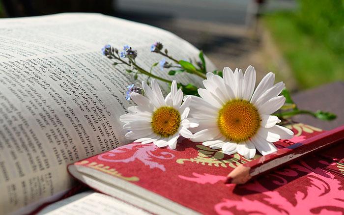 Каждому человеку стоит составить свой список книг к прочтению