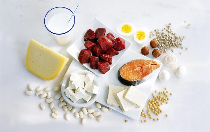 В мясных и молочных продуктах содержится наибольшее количество белка