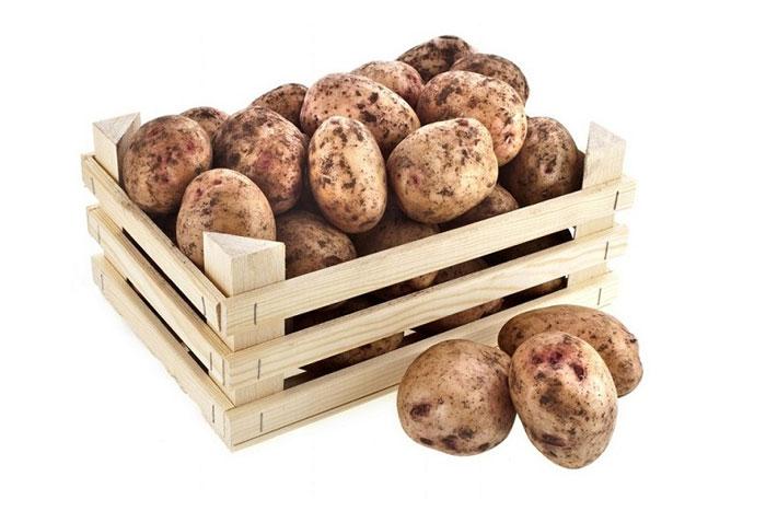 Для хранения выбирайте чистый картофель без внешних повреждений