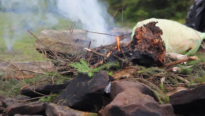 Запах дыма и хвои поможет отпугнуть комаров на природе