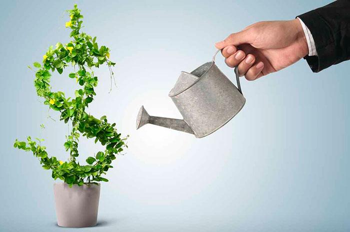 Если начальный капитал позволяет, можно открыть МФО