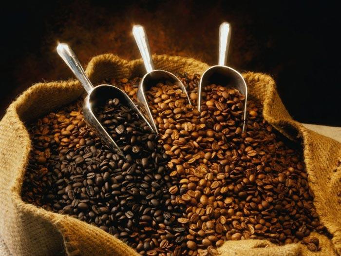 Наиболее популярный сорт кофе - Арабика