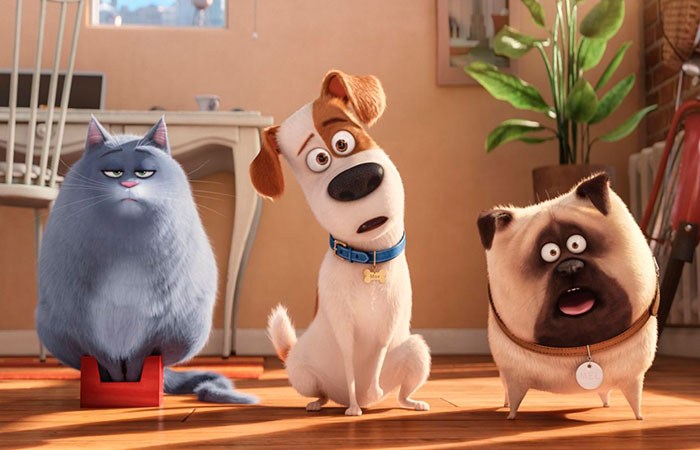 Тайная жизнь домашних животных - увлекательный мультфильм о том, чем занимаются питомцы в отсутствие владельцев