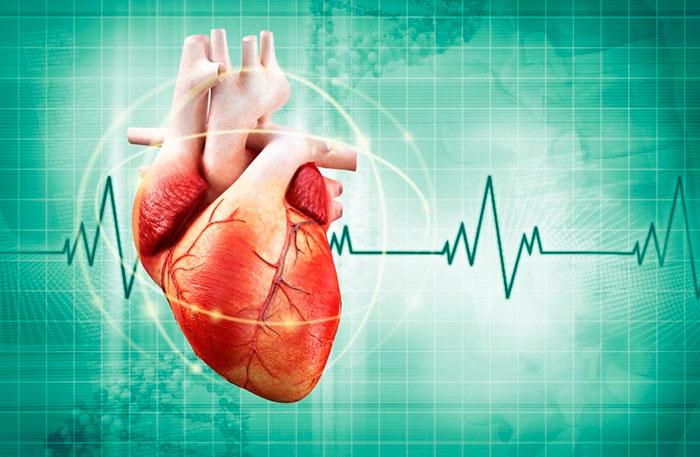 Нормальное сердцебиение человека - 60-80 ударов в минуту