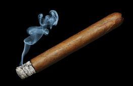 Искусство наслаждаться сигарой. Как правильно курить и получать удовольствие