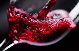 Выбираем вино: какое бывает, виды, польза для здоровья
