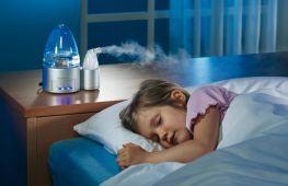 В комнате сухой воздух – значит, нужен увлажнитель. Как выбрать устройство для комфорта детей и всей семьи