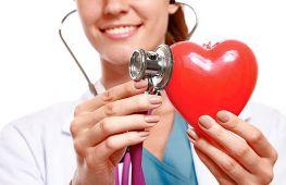 Сердце человека: с какой стороны находится, какое сердцебиение считается нормальным