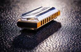 Губной инструмент – гармошка. Модель для начинающих: как правильно её выбрать