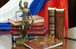 Суды общей юрисдикции: что собой представляют и какие решают вопросы