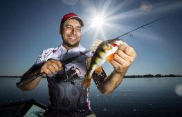 Какая рыба водится в Волге: описание основных видов